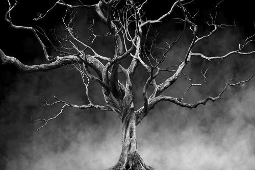 ねずの木の話という首が転がるグリム童話がホラーすぎて怖い
